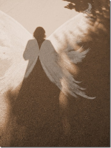 angel03-800y-thumb