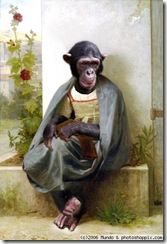 la_tricoteuse_chimp