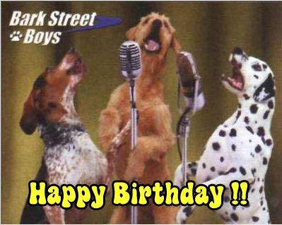 happy birthday animal funny - photo #13