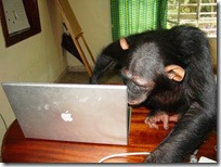 chimp-computer