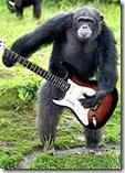 chimp2s