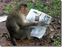 monkey_wideweb__470x3530