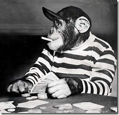 chimpDM2503_468x452