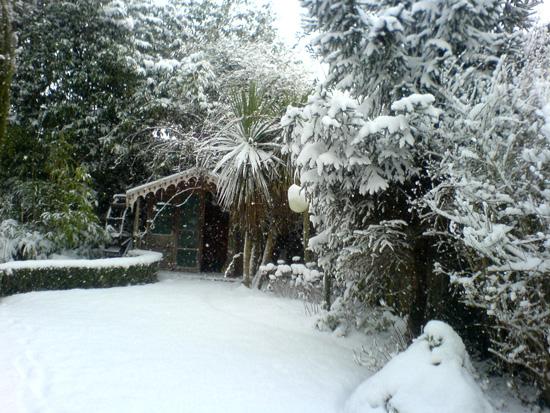 snow013